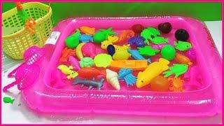 Đồ chơi câu cá bể phao bơi lớn, 50 loại cá: cá vàng, cá đuối, rùa, bạch tuộc... (Chim Xinh)