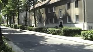 Z kamerą przez Łabędy - wiosna 2007 rok