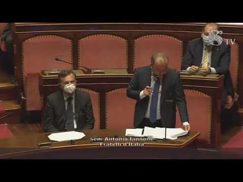FdI Parlamento - La dichiarazione di voto del Sen. Iannone sulla relazione  COVID-19 e ciclo rifiuti