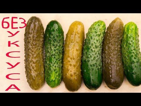 Хрустящие ОГУРЦЫ без УКСУСА и стерилизации, хранятся в квартире год и больше