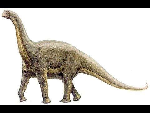 Alamosaurus   Enciclopedia sobre Dinosaurios