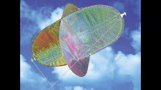 UFO SAM Kite - Review/Flight