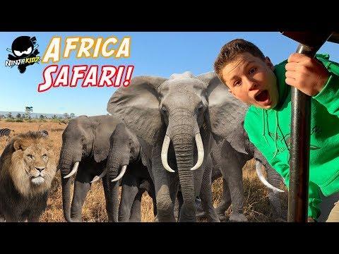 Ninja Kidz on Safari in Africa! We found BABY LIONS!