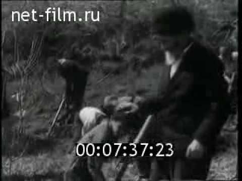 киножурнал новости дня хроника наших дней 1964 15