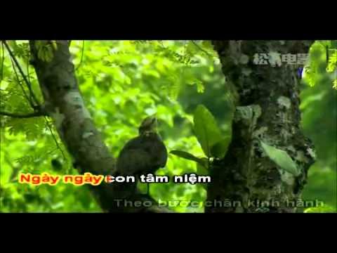 Con Quy Y Tam Bảo - Trung Hậu (Karaoke)