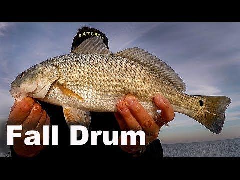 Black Drum And Redfish At Murrells Inlet