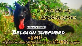 Family Dog ആക്കാൻ പറ്റിയ ഒരു Adaar item || Belgian Shepherd || DreamCatchers || Ep:12