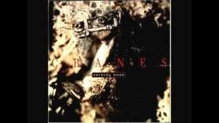 CRANES - September
