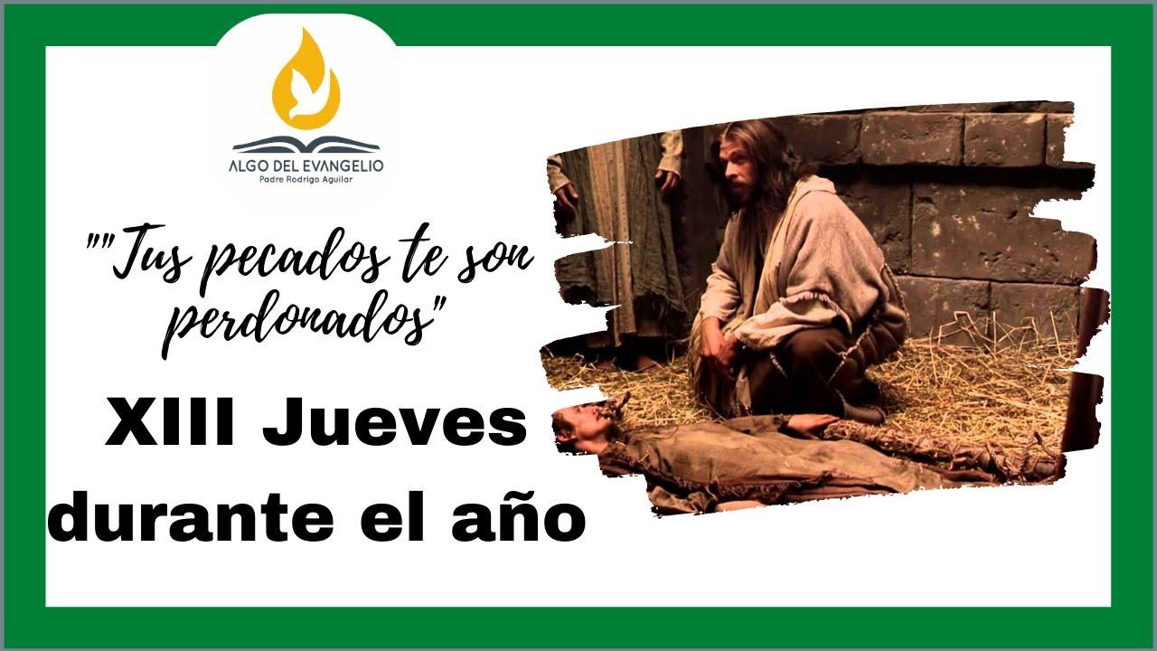 EVANGELIO DE HOY - XIII Jueves  durante el año -Mateo 9, 1-8 - Ten confianza