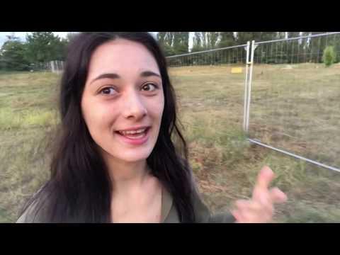 Vlog #279 - Lippenlesen gegen Rechts?!// Rettet die Kobolde! ????
