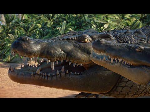 planet-zoo---mundo-aberto---antas,-crocodilo-e-bongos-soltos-na-selva