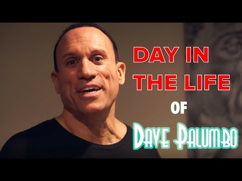 THE PALUMBO EMPORIUM! A Day in the Life of Dave Palumbo