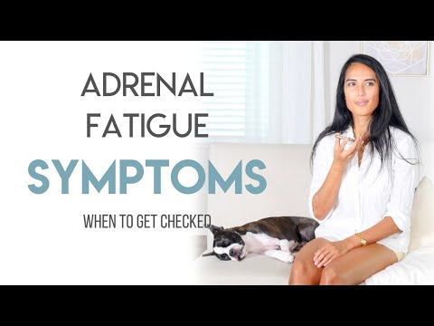 Adrenal Fatigue Symptoms When to Get Checked (FAQ)