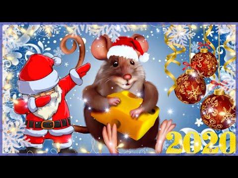 НОВОГОДНЕЕ ПОЗДРАВЛЕНИЕ С НОВЫМ 2020 ГОДОМ ! Мечта сбывается! Год крысы видео
