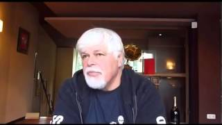 "Animal First interviews Captain Paul Watson - ""The oceans are dying in our time"""