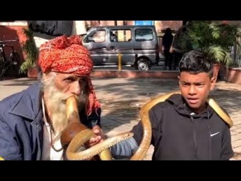 VOISINAGE - Visite de la ville de DELHI sur KANAL AUSTRAL.TV