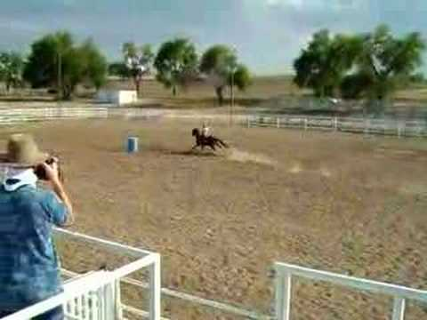 Triple D Ranch Horse Training Trial Run
