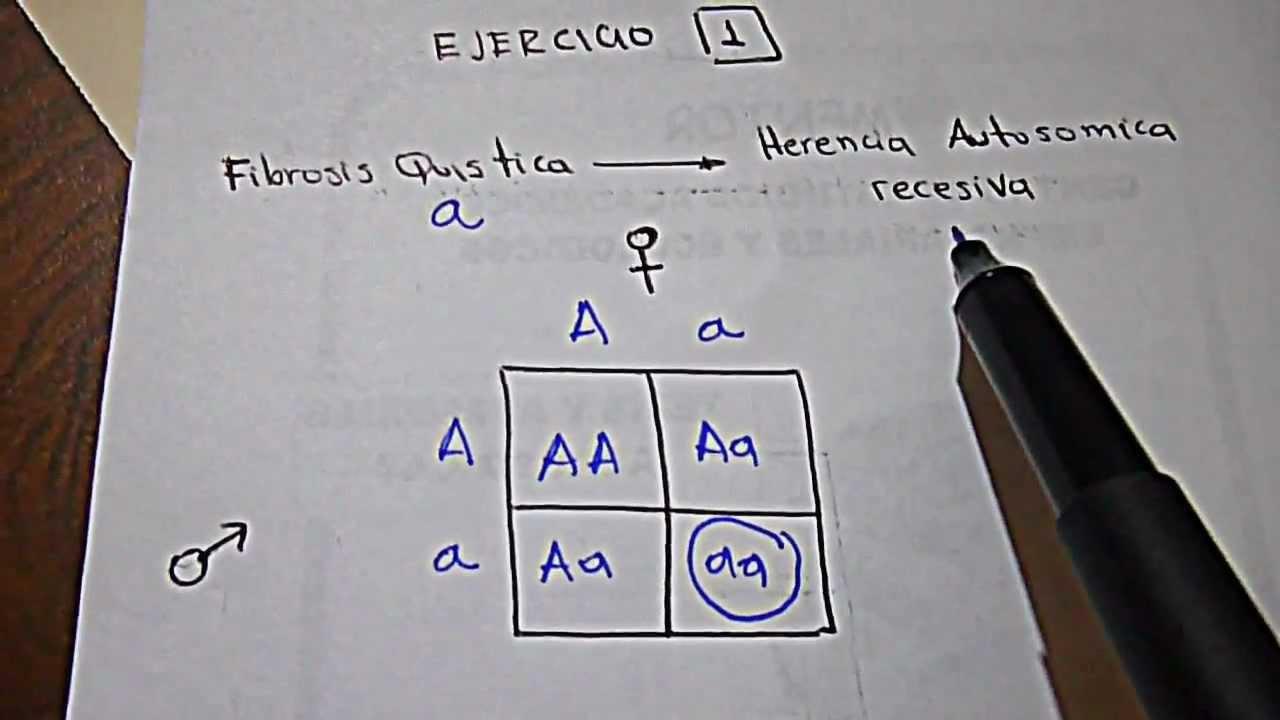EJERCICIO 1 taller Genetica Mendeliana ii Medicina CES