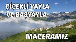 Çiçekli Yayla ve Başyayla Maceramız - Çamlıhemşin - Rize - TURKEY