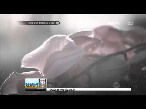 Video Clip Bunga Citra Lestari Kuasamu - IMS