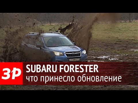 Subaru Forester 2016: что обновили?