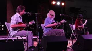 DelFest Great Moments: Episode 2 - Ronnie McCoury, David Grisman & Sierra Hull