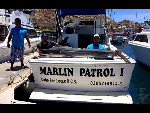 "Cabo San Lucas, 107"" Striped Marlin: May 17th, 2016"