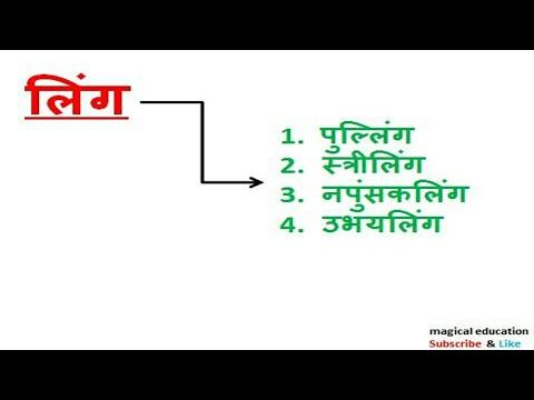 Gender लिंग best hindi vyakaran hindi grammar हिंदी व्याकरण for TET CTET  RO/ARO UP Police