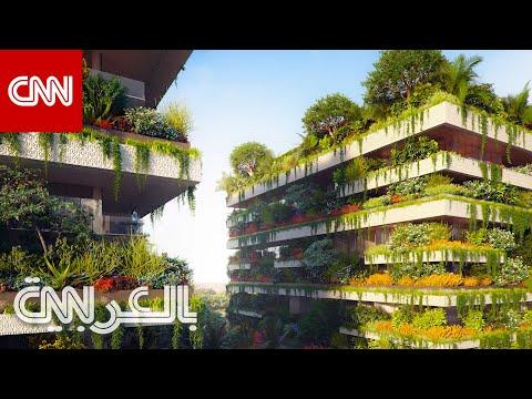 غابات -تتسلق- على المباني في مصر.. وعاصمة جديدة بحجم سنغافورة تقريبًا