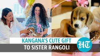 Kangana gifts puppy to sister Rangoli on birthday, names him Gappu Chandel