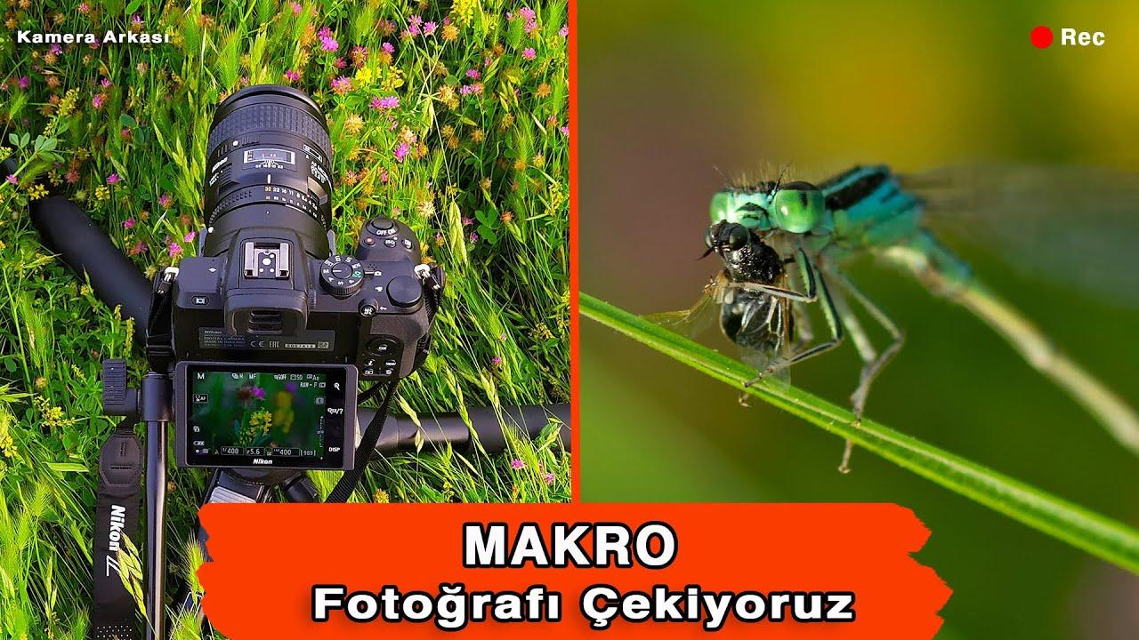 Makro Fotoğrafçılık. Nasıl Yapılır, Makro Objektifler ve Kamera Arkası. Macro Photography