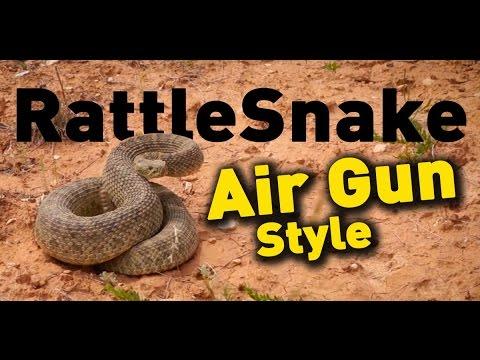 Rattle Snake Hunt Real Air Gun Hunting : American Airgunner TV