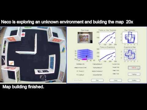 Cognitive spatial navigation
