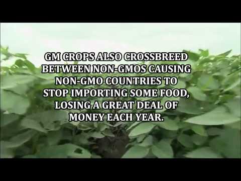 PSA GM CROPS