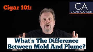 What is the Difference Between Mold and Plume? - Cigar 101