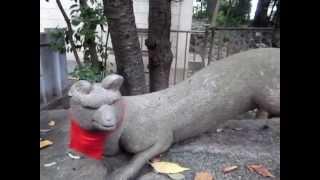 水稲荷神社の耳欠け神狐
