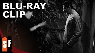 Universal Horror Collection: Vol. 1 - The Invisible Ray (1936) - Clip: Glow In The Dark (HD)