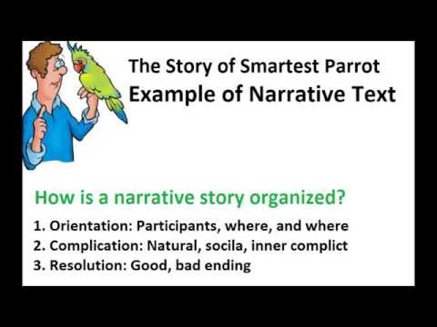 Example Of Narrative Text In The Smartest Parrot