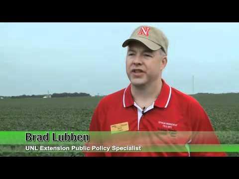 Nebraska Soybean Board -- Marketing & Risk Management