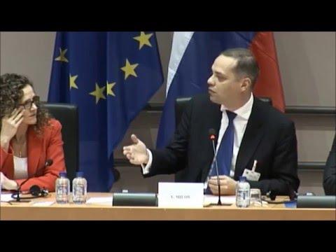 Vladimir Milov in European Parliament