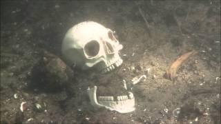 Video Der Tote im See download MP3, 3GP, MP4, WEBM, AVI, FLV Agustus 2017