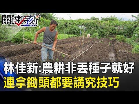 林:農耕不是種子丟下去就會長出東西 連拿鋤頭都要講究技巧! 關鍵時刻20190306-6 林佳新