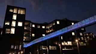Pausch Bridge Light Show