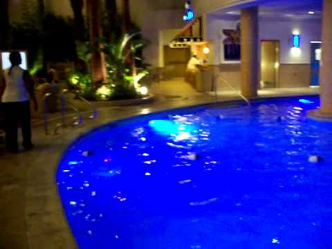 Swimming Pool at The Golden Nugget - Downtown Las Vegas