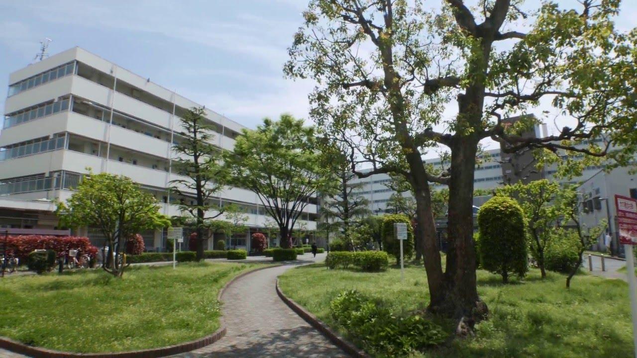 Takenozuka Apartments Adachi City Tokyo Jp April 2016 Youtube