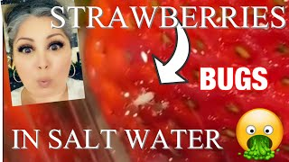 STRAWBERRIES IN SALT WATER AND BUGS CRAWL OUT!