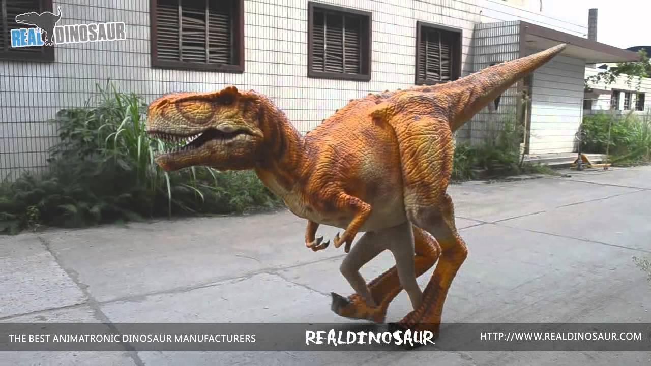 Hot sale Halloween costume adult walking dinosaur suit & Hot sale Halloween costume adult walking dinosaur suit - YouTube