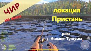 Русская рыбалка 4 - река Нижняя Тунгуска - Чир у пристани на вэки