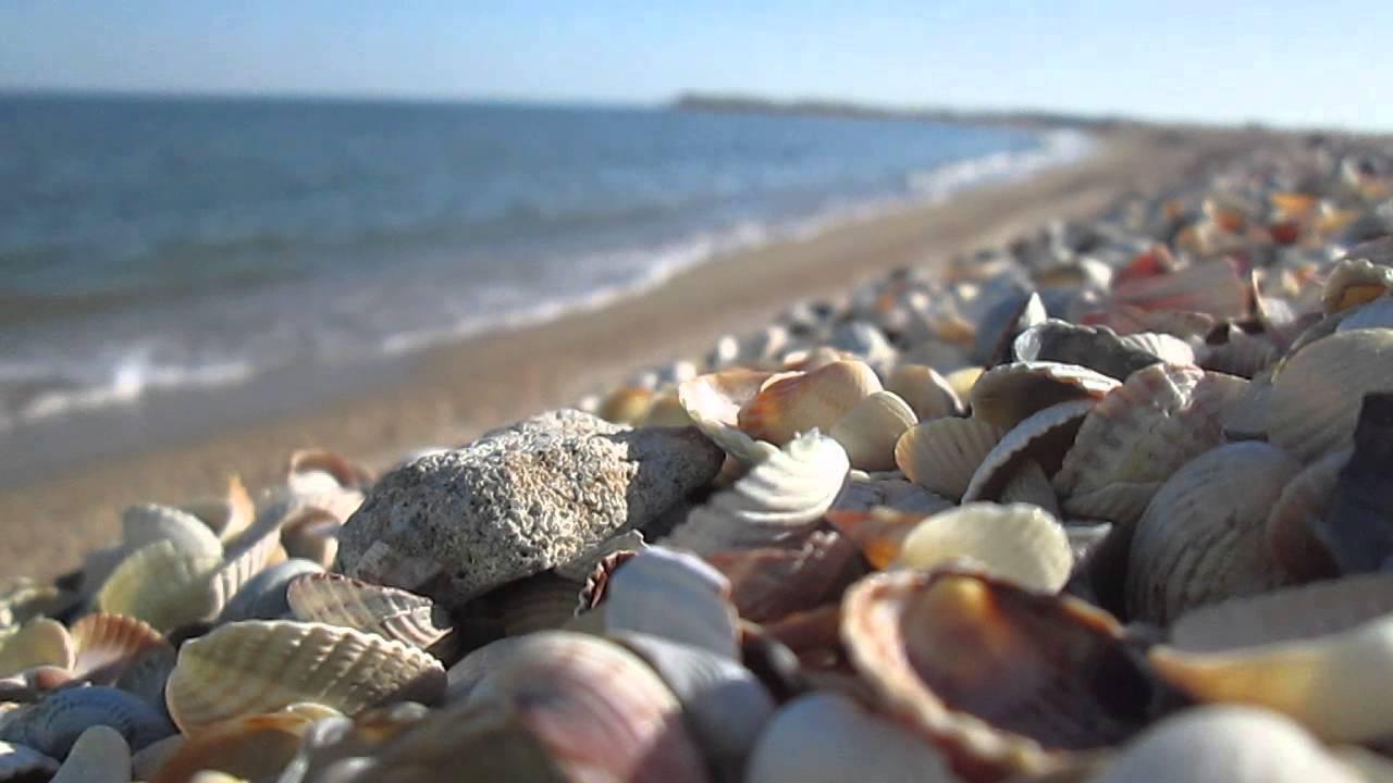 Бердянск море картинки