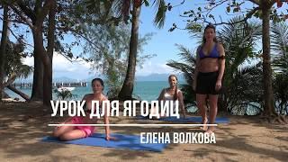 Урок для ягодиц Елена Волкова
